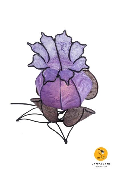 Bocciolino-basso lilla