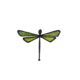 dragonfly-shaped magnet green little